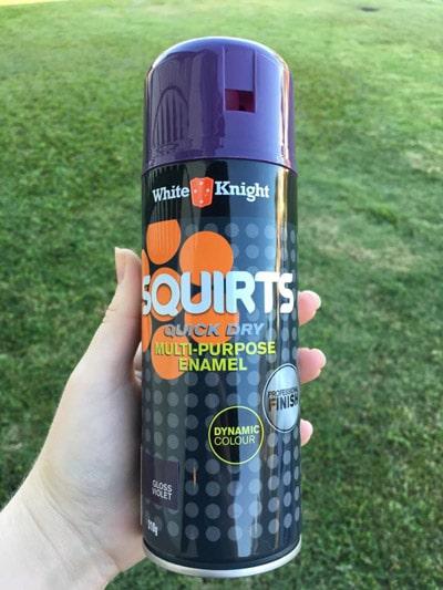 squirts multi-purpose enamel